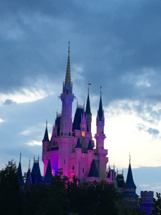 purple-castle_27920687672_o