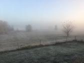 foggy-morning_31111167762_o