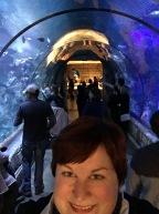 tunnel-selfie-ii_32011150395_o